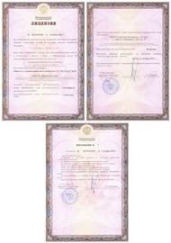 Образец лицензии Министерства культуры на реставрацию